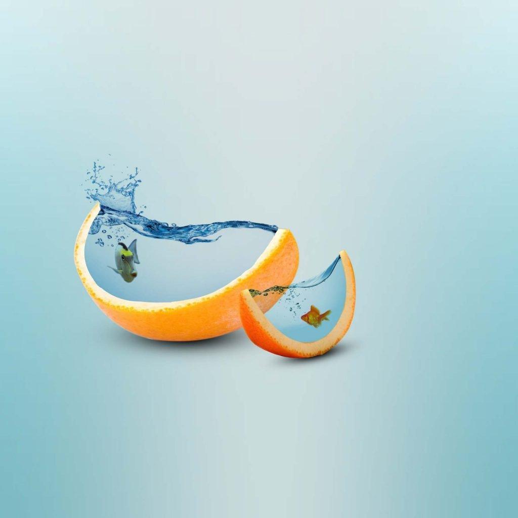 Reinforce Creative Juices